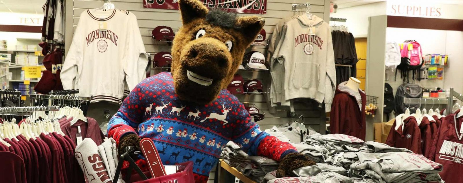 Monte the Mustang at the Morningside Bookstore