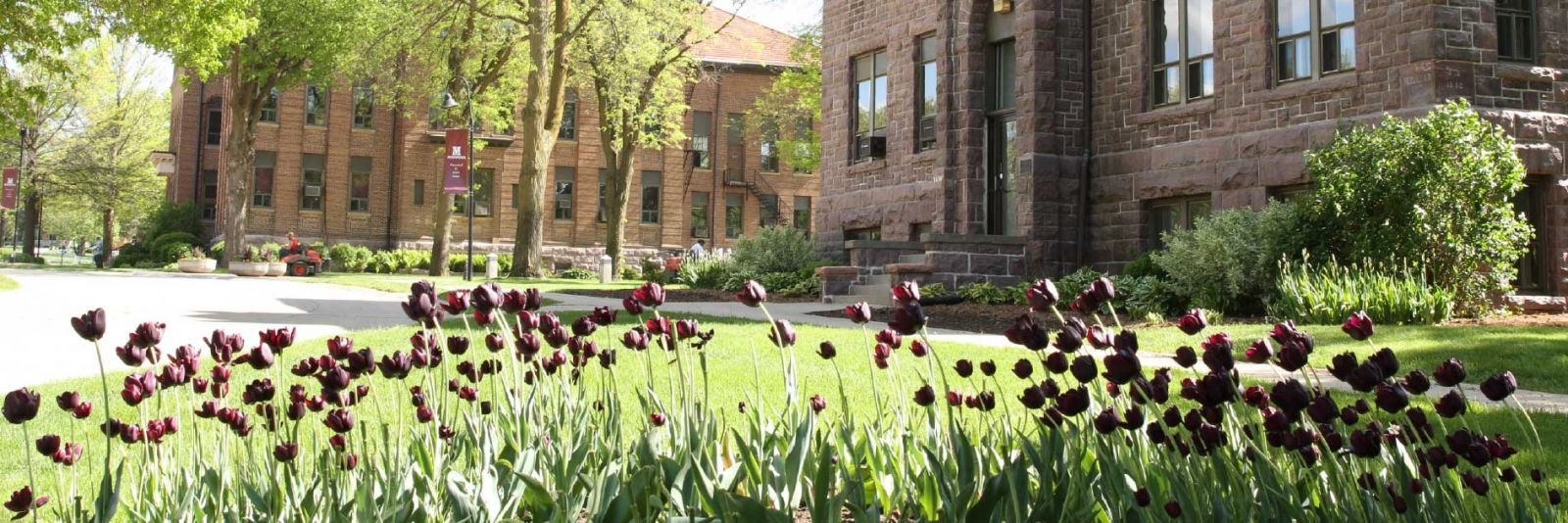 Campus in the Spring