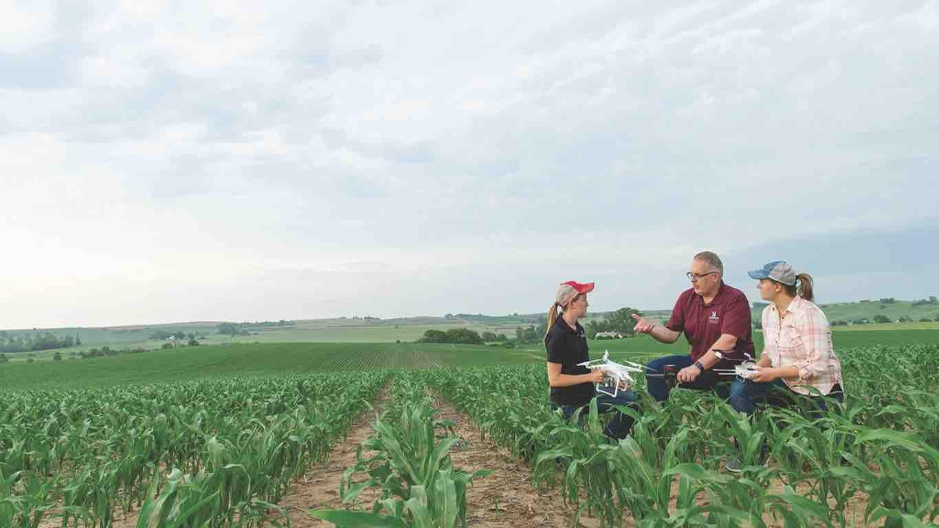 Ag photo of Tom Paulsen with students in a corn field